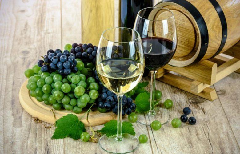 wiedza na temat wina